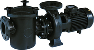 Насос с префильтром 111 м3/ч Kripsol Kripton KRF-550 4,9 кВт 380В
